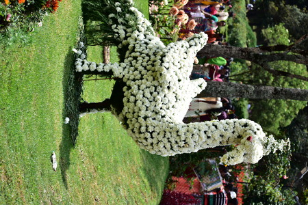 Kodaikanal, Tamilnadu, India - June 2, 2019: Peacock Statue made with flowers at the 58th flower show in Kodaikanal 報道画像