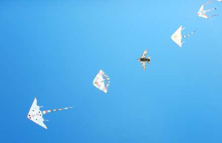 flying kites: flying kites in blue sky