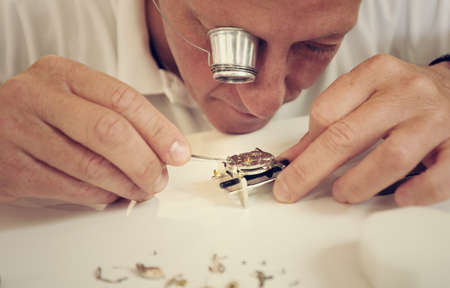 watchmaker making luxury handmade watch