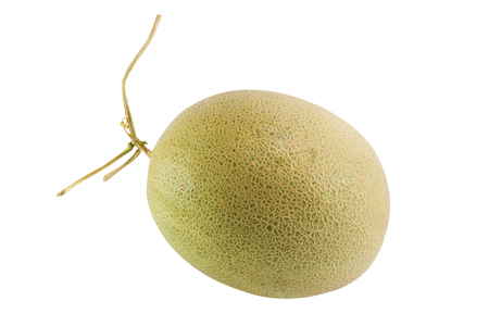 Fresh and sweet Melon isolated