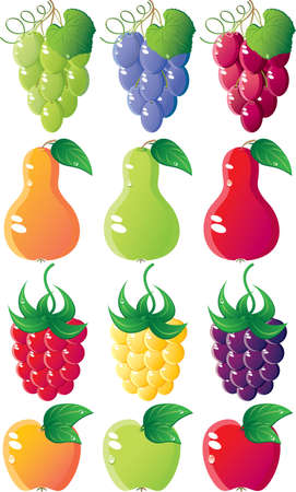 Berries icon set. Vaus sorts. Isolated on a white background. All parts (object) closed, possibility to edit. Stock Vector - 7215759