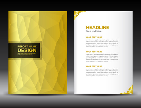 Gold Cover Annual report template,polygon background,brochure design,cover template, design,portfolio,yellow background, info-graphics,Front page and back page
