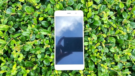 Mobile smart phone in green grass