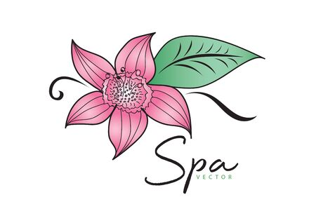 Pink Flower vector illustration. logo design. green leaf icon, Element for beauty and spa, logotype, sign, web icon