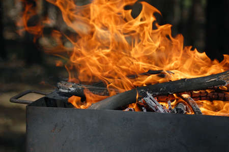 burning fire wood in the mangal