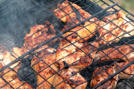 pickled chicken fried on a grill on a picnic. harmful fatty foods. backyard barbecue party