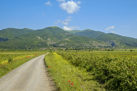 Road in valley of roses in bulgarian mountains 1 Stock Photo