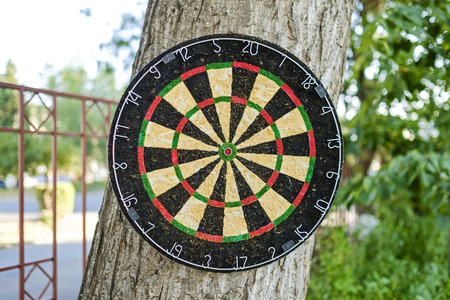 Dartboard in the yard on the tree close-up 1 Imagens