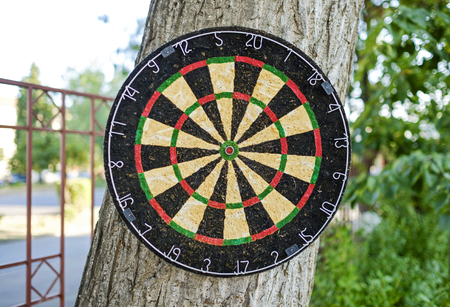 Dartboard in the yard on the tree close-up 2 Imagens