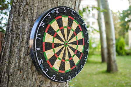 Dartboard in the yard on the tree close-up 3