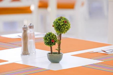 Small green trees on the table 2