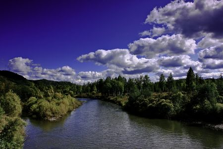 Asian forest ecosystem in China's Inner Mongolia Hulunbeier Park Stock Photo
