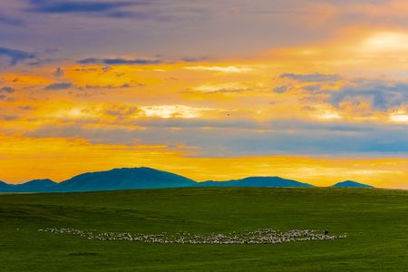 Hulunbeier prairie pasture in Inner Mongolia China
