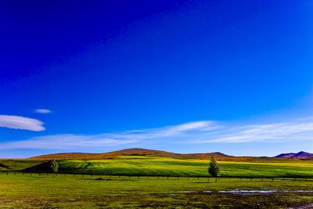 Hulunbeier agriculture in China's Inner Mongolia - Rape
