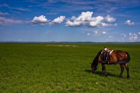 Inner Mongolia steppe Stock Photo