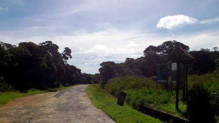 plains: horton plains srilanka Stock Photo