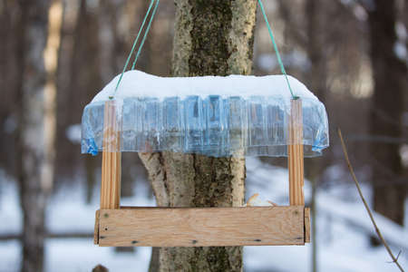 citypark: Tree house for feeding birds in winter with bread pieces.