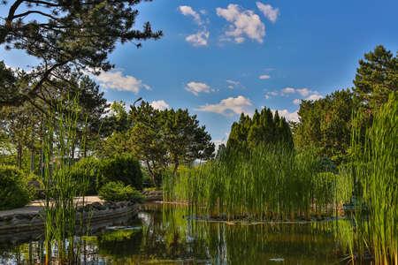 Image of Japanese Garden located on Margit Island of Budapest, Hungary during sunny summer day. 版權商用圖片