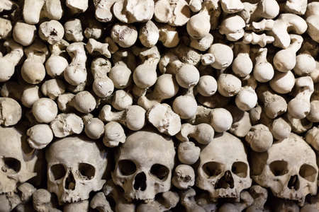 Human bones and skulls as a background.