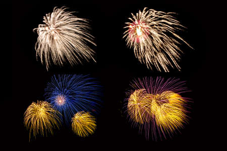 The fireworks or salute in the night sky. Abstract textures for your project on black background