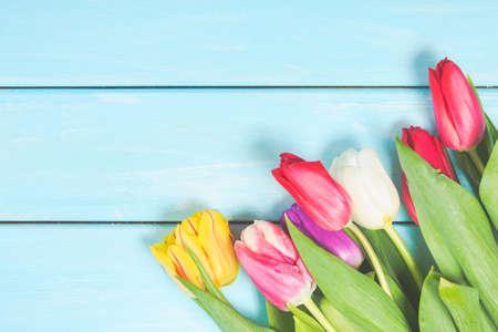 五颜六色的春天郁金香在浅兰的木背景开花作为与自由空间的贺卡。母亲日或春天的概念