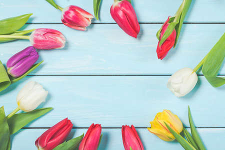 Colorful spring tulip flowers on light blue wooden background as greeting card with free space. Mothersday or spring concept