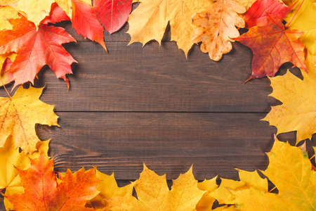 Colorful autumn leaves foliage on dark wooden texture background. Free space for your text Banco de Imagens