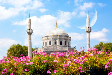 Pink flowers with Pertevniyal Valide Sultan Mosque, an Ottoman imperial mosque in Istanbul, Turkey. Summer sunny day with blue cloudy sky and crescent moon. Islam, moslem and Ramadan concept