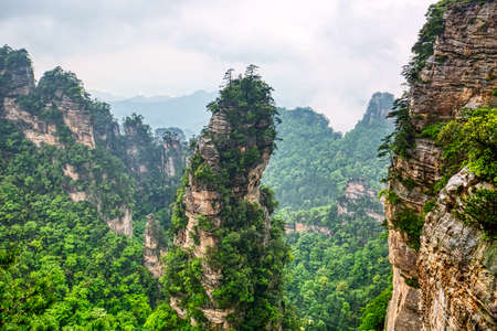 Zhangjiajie National park. Famous tourist attraction in Wulingyuan, Hunan, China. Amazing natural landscape with stone pillars quartz mountains in fog and clouds.