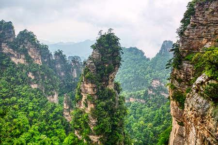 Zhangjiajie-Nationalpark. Berühmte Touristenattraktion in Wulingyuan, Hunan, China. Erstaunliche Naturlandschaft mit Steinsäulen-Quarzbergen in Nebel und Wolken. Standard-Bild