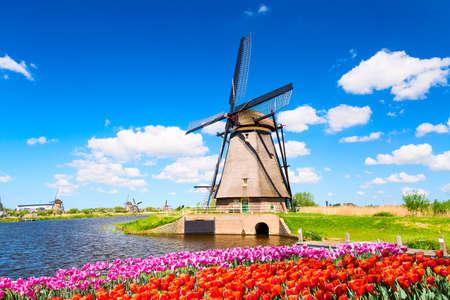 Kleurrijk de lentelandschap in Nederland, Europa. Beroemde windmolen in het dorp Kinderdijk met een bloembed van tulpenbloemen in Nederland. Beroemde toeristische attractie in Nederland. Stockfoto