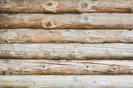 Background log wall. Timber abstract texture background