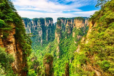 Zhangjiajie National Forest Park. Gigantic quartz pillar mountains rising from the canyon during summer sunny day. Hunan, China Stock Photo