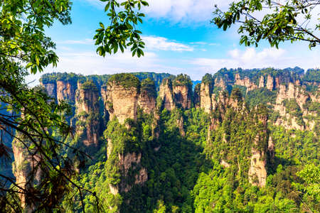 Zhangjiajie National Forest Park. Gigantic quartz pillar mountains rising from the canyon during summer sunny day. Hunan, China. Famous tourist attraction Stock Photo