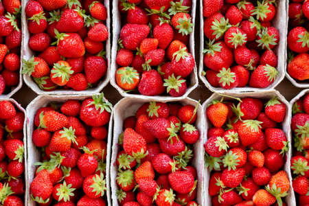 Many fresh strawberries in boxes for sale at a fruit market outdoors. Top view. Healthy food.