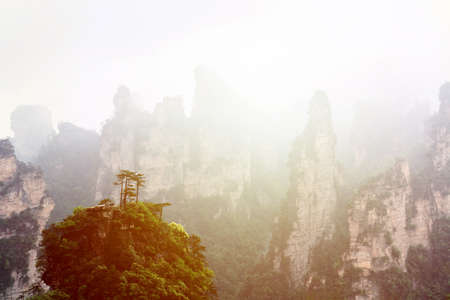 Zhangjiajie National park. Famous tourist attraction in Wulingyuan, Hunan, China. Amazing natural landscape with stone pillars quartz mountains in fog and clouds during sunset. Banco de Imagens