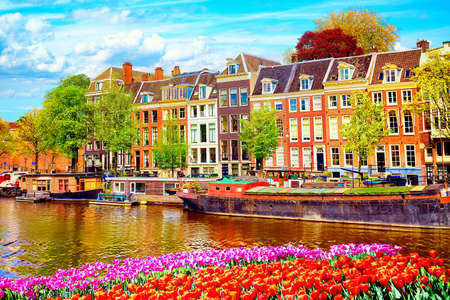 Vista del paesaggio urbano del canale di Amsterdam in estate con un cielo blu e vecchie case tradizionali. Colorate aiuola di tulipani primaverili in primo piano. Pittoresco di Amsterdam, Paesi Bassi Archivio Fotografico