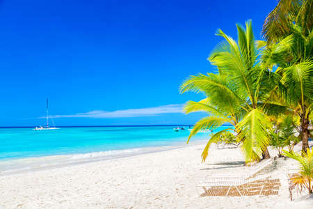 Beautiful tropical beach with sun loungers and palms. Saona Island, Dominican Republic. Caribbean resort. Vacation travel background