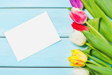 Colorful spring tulip flowers with blank photo on light blue wooden background as greeting card. Mothersday or spring concept