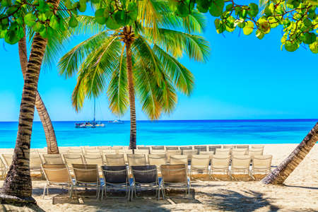Palm trees with sun loungers on the caribbean tropical beach. Saona Island, Dominican Republic. Vacation travel background. Фото со стока