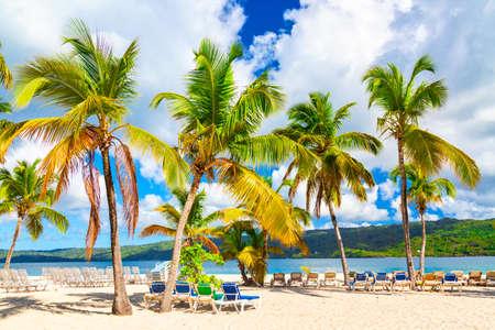 Beautiful Cayo Levantado island beach with palms. Samana, Dominican Republic. Vacation travel background. Фото со стока