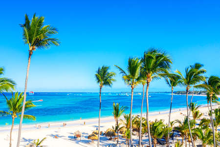 Beach vacation. Aerial drone view of tropical white sandy Bavaro beach in Punta Cana, Dominican Republic. Amazing landscape with palms, umbrellas and turquoise water of atlantic ocean.
