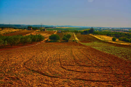 agricultural land after plowing