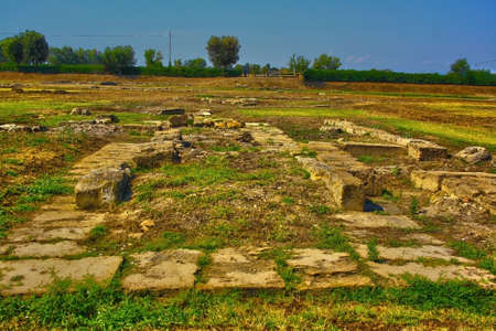 metaponto archaeological park