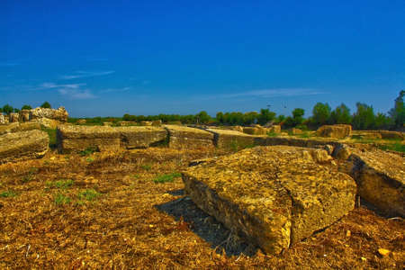 impressive remains in the archaeological park of metaponto Stock Photo