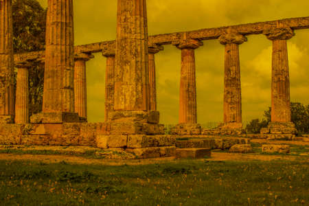 temple of the goddess hera metaponto
