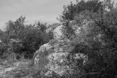 rocky landscape 版權商用圖片