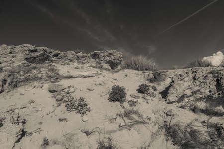 desert landscape 版權商用圖片
