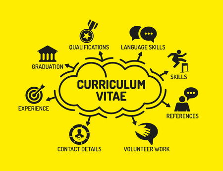 contact details: Curriculum Vitae. Chart with keywords and icons on yellow background Illustration