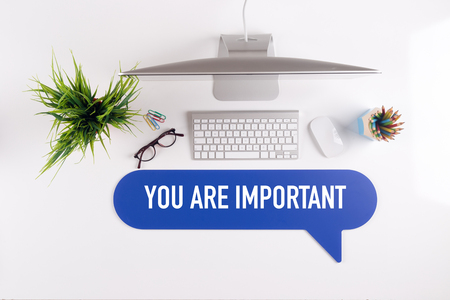 self assurance: YOU ARE IMPORTANT Search Find Web Online Technology Internet Website Concept
